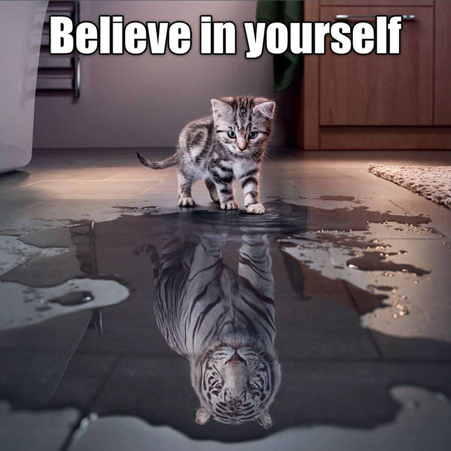 self-belief